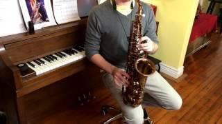 Viking M60 Valkyrie Alto Saxophone Demo