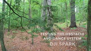 DJI Spark Obstacle Avoidance Tests!