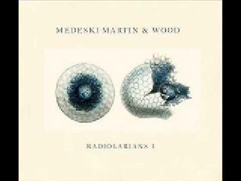 Medeski Martin & Wood  Professor Nohair
