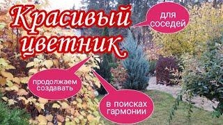 Красивый цветник В поисках гармонии Поиск красивых сочетаний ЛАНДШАФТНЫЙ дизайн своими руками