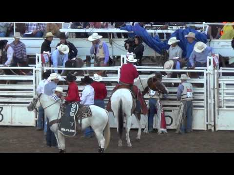 Nephi, UT Rodeo Caught Abusing Horses