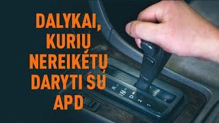 Opel Zafira B 1.9 CDTI (M75) Alyvos filtras keitimas - pakeitimo patarimai