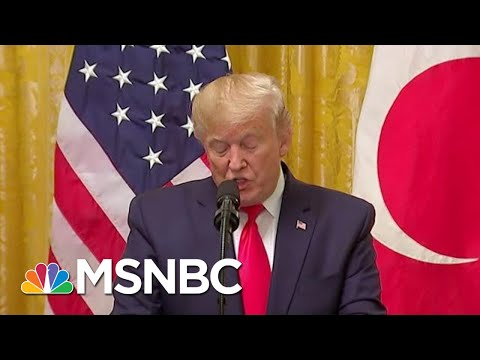 Elephant In The Impeachment Hearing: Trump Hands Russia Big Wins | Rachel Maddow | MSNBC