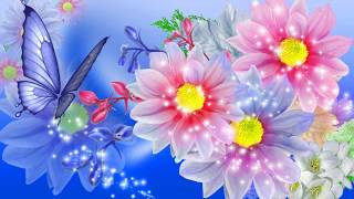full hd 1080p nature wallpapers desktop backgrounds hd pictures