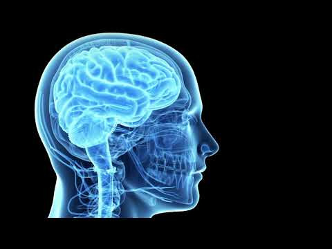 Как расшифровывается ээг головы