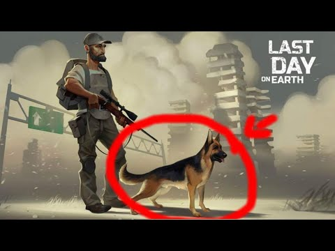 Last Day On Earth Dog Companion? Can We have A Pet Follower?