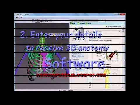 Human Anatomy Video - DOWNLOAD 3D Human Anatomy Software FREE! - YouTube