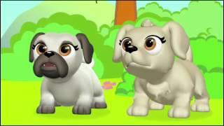 Pet Parade - Επεισόδιο 13 - Η Ταυτότητα