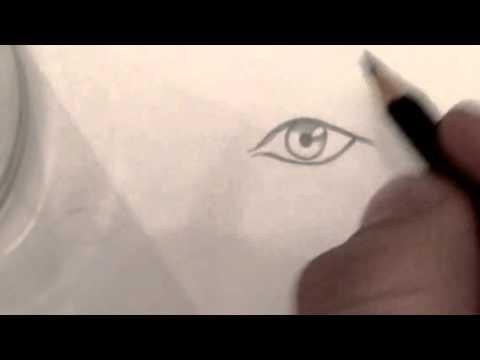 Как нарисовать глаза человека для начинающих