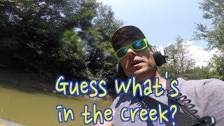 Metal Detecting: Civil War Relics in Coldwater creek (A Day in the Life #199)