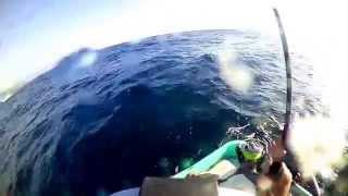 釣り仲間と伊東でティップランエギングしてきました。 セフィアCI4+ボ...