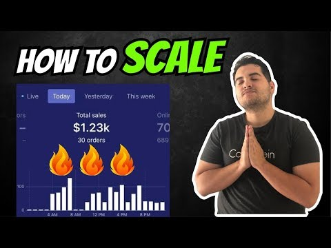 EASY WAY to SCALE to $1000 a Day | Shopify Dropshipping 2019 thumbnail