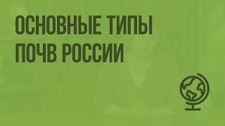 Основные типы почв России. Видеоурок по географии 8 класс