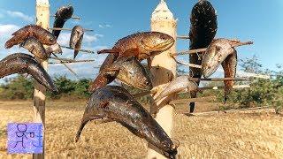 Đây Là Cách Bắt Cá Kỳ Lạ Nhất Việt Nam .Đậm Chất Sinh Tồn Nơi Hoang Dã .Amazing ! Best Fishing Video