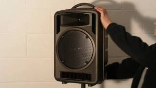 Portable 100w music & wireless PA system.