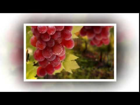 Диета по Пегано. Виноградная диета при псориазе