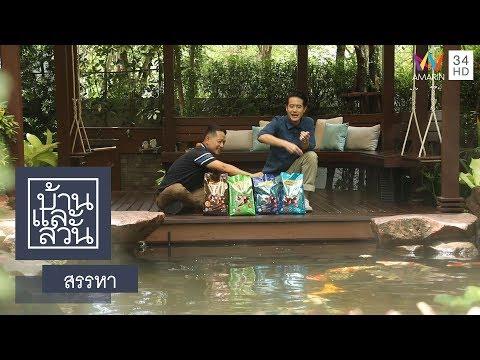 บ้านและสวน | สรรหา | อาหารปลา OPTIMUM