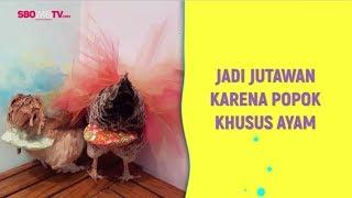 JADI JUTAWAN KARENA POPOK KHUSUS AYAM