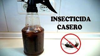cómo eliminar las hormigas insecticida casero trucos tips consejos