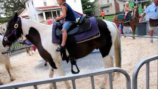Pony ride at fair Bucks Kid