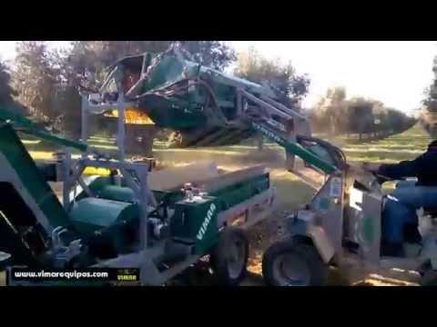 De Masi Cernitrice CRN 3.2 per la pulizia delle olive in Spagna