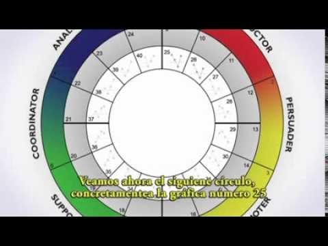 TTI Success Insights Wheel - YouTube