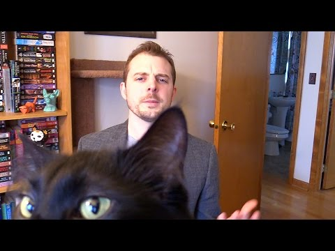 Cat Owner Interrupted During BBC Interview
