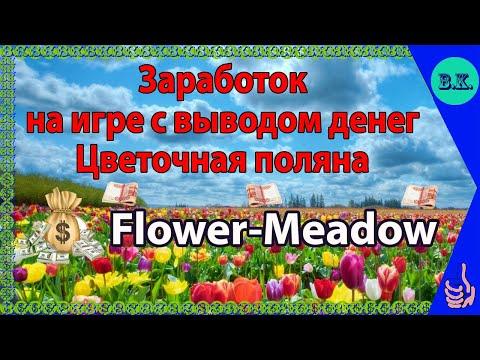 Заработок на игре с выводом денег Цветочная поляна(Flower-Meadow)????