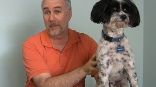 Freshpet Review- The Only Dog Food My Picky Dog Will Eat! -epicreviewguys
