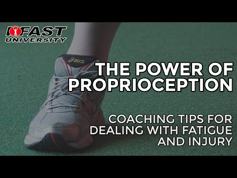 The Power of Proprioception