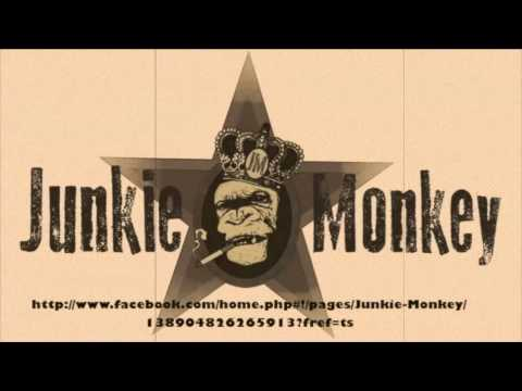 Junkie Monkey - Where Do I Go ?