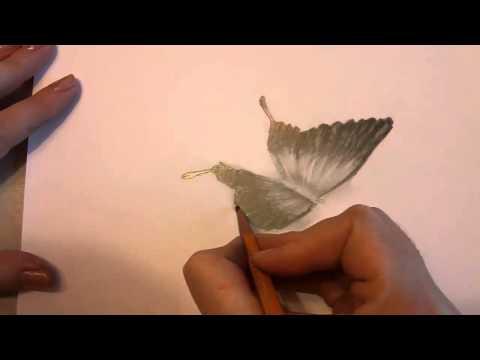 видео: 3d рисунок - Бабочка