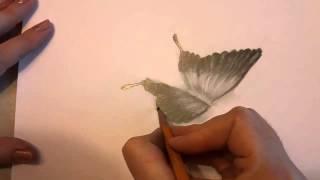 3D рисунок - Бабочка(http://www.youtube.com/channel/UCZ_sZmJcADBgqTGucG-IVUQ новый канал Дарьи В этом Мастер-Классе мы нарисуем самый настоящий 3D-рисунок..., 2013-11-07T02:30:55.000Z)