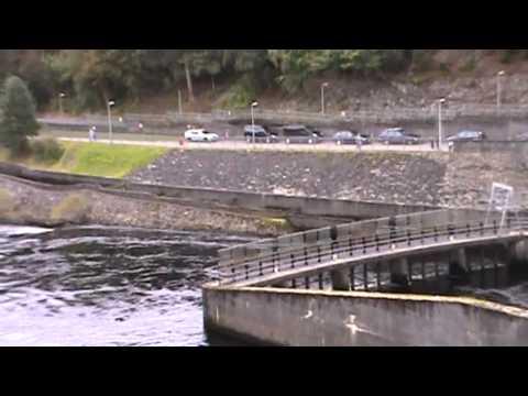 Pitlochry Dam, Fish Ladder & Scottish Hydro Power Station