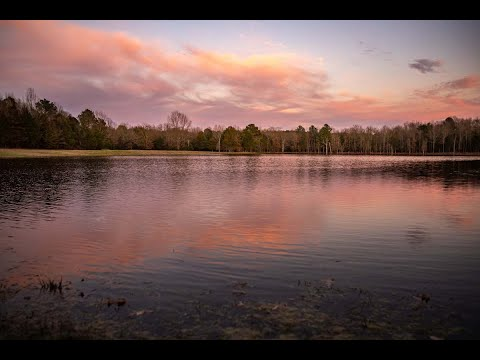 Pine Lakes Ranch | East Texas Ranch For Sale