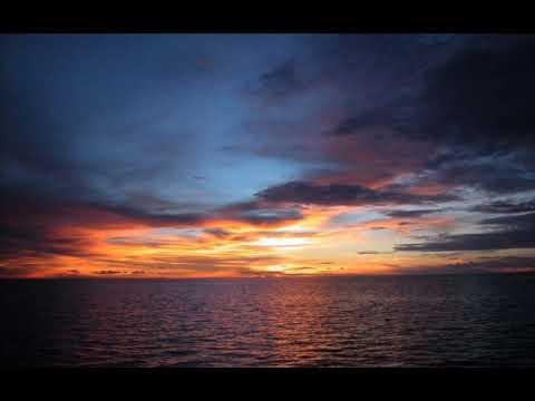Tiesto Feat. C.C. Sheffield - Escape Me (Avicii's At Night Remix)