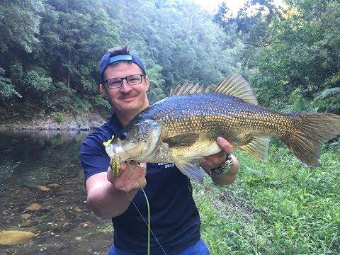 Clear Water Australian Bass - 53cm And 51cm PB!!