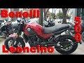 Review Benelli Leoncino 500 Argentina
