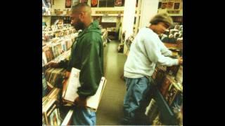 DJ Shadow - Organ Donor HQ HD