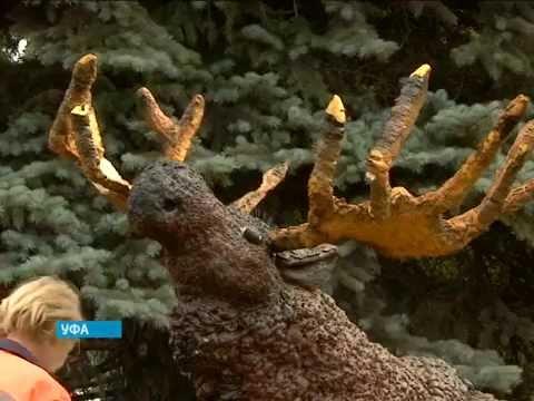 В Уфе  нападению со стороны вандалов подвергся Лось Орджик – символ Черниковки