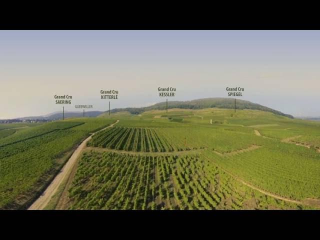 Survolez le vignoble d'Alsace à 360°