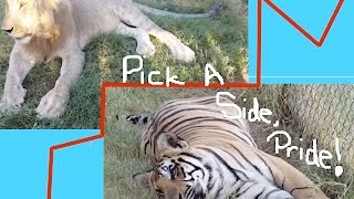 "WATC Ep. 122 - ""Pick A Side, Pride!"""