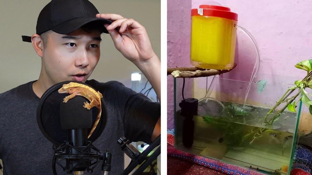 DIY AQUARIUM FILTER USING FREE ENERGY?! | Fish Tank Review 108