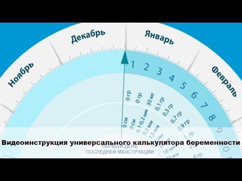 Видеоинструкция универсального калькулятора беременности (гестационный круг)