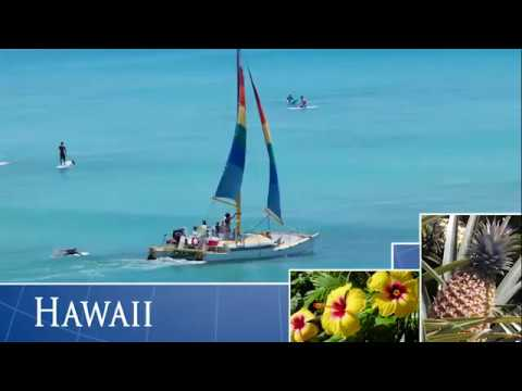 Hawaiian Ocean Transport