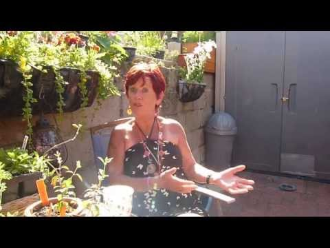 Inclined Bed Therapy Sandra Shares Her IBT Healing From Pain, Injury, Swelling, Arthritis.