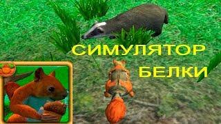 Симулятор Белки #1 Знакомство Поиск Дома Первая Битва Детское Видео Игровой Мультик