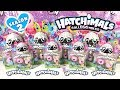 default - Hatchimals CollEGGtibles Season 2 - 4-Pack + Bonus (Styles & Colors May Vary) by Spin Master