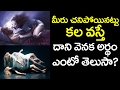 Revealed : Dreamt that you are No More? What does it mean? | VTube Telugu