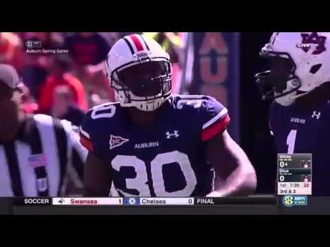 Auburn Tigers Top 10 Plays of 2013